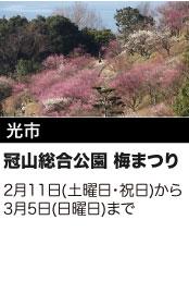 光市 冠山総合公園 梅まつり 2月11日(土曜日・祝日)から3月5日(日曜日)まで