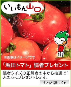いいもん山口/「垢田トマト」をプレゼント