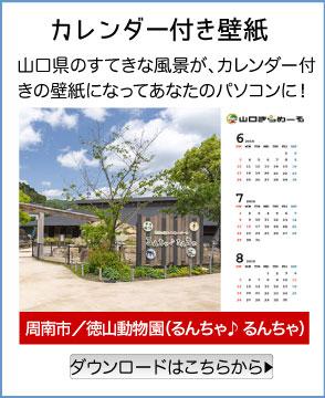 カレンダー付き壁紙/周南市/徳山動物園(るんちゃ♪ るんちゃ)/山口県のすてきな風景が、カレンダー付きの壁紙になってあなたのパソコンに!