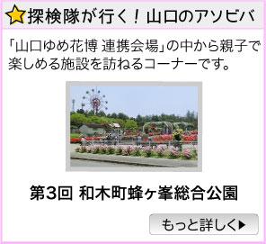 探検隊が行く! 山口のアソビバ/第3回 和木町蜂ヶ峯総合公園