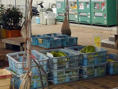 ほぼ完売状態の野菜の写真