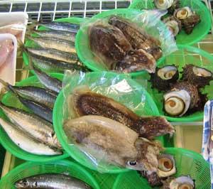 市場直送の新鮮な魚介類の写真