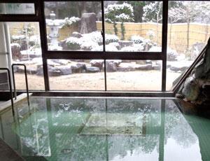 内風呂と和風の庭園の写真