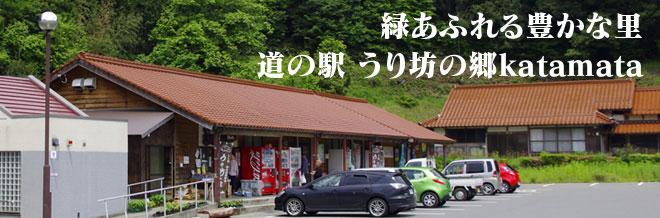 山口県の道の駅/緑あふれる豊かな里 道の駅 うり坊の郷katamata