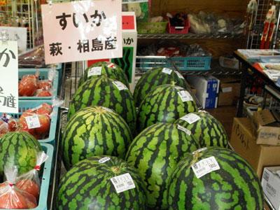 相島産のスイカの写真
