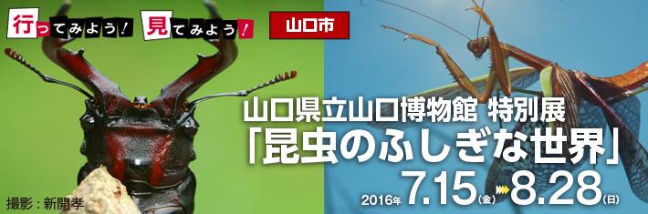 行ってみよう!見てみよう!/萩市萩博物館特別展「衝撃!ビッグアニマル大接近 -地球をゆるがす巨大動物たち-」ほか