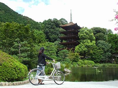 国宝・瑠璃光寺五重塔の写真