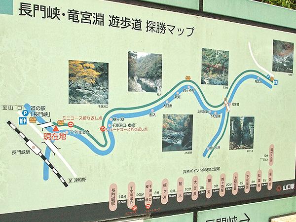 遊歩道の探勝マップの写真
