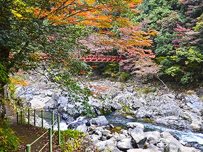 紅葉シーズンの紅葉橋周辺の写真