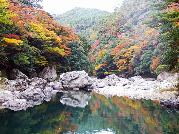長門峡の紅葉の様子の写真