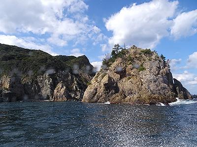 観光船からの眺めの写真