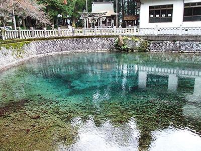 弁天池の写真