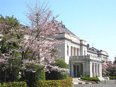 山口県政資料館(旧県庁舎)の桜の風景の写真