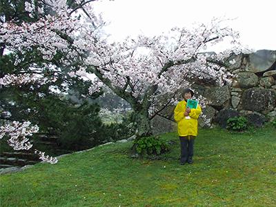 NPO萩観光ガイド協会の山根千鶴子さんの写真