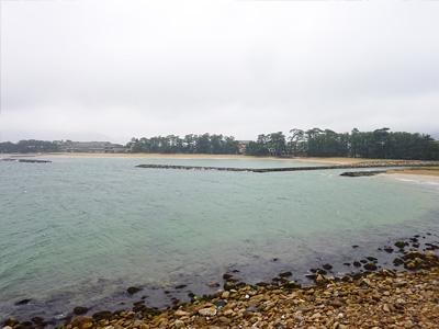菊ケ浜の写真