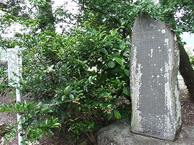 殉難十七士碑の写真